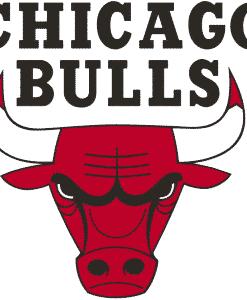 Chicago Bulls Gear