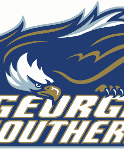 Georgia Southern Eagles Gear