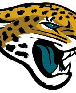 Jacksonville Jaguars Gear
